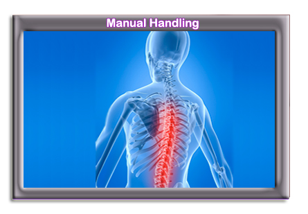 Click here to find out more about our Manual Handling Courses